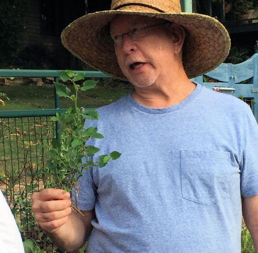 Jim-Lon-Invasive-Plants