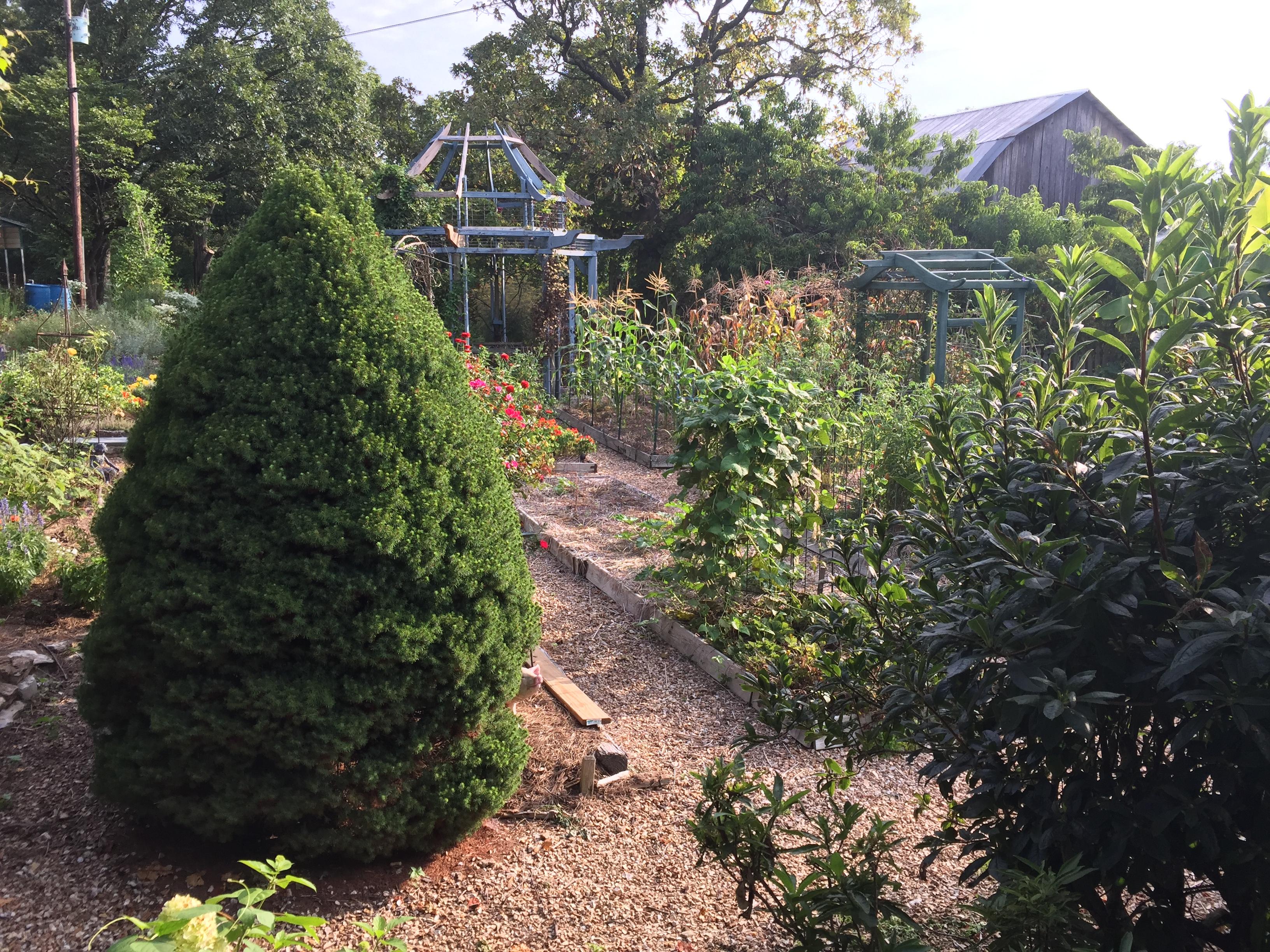 Long-Creek-Herbs-garden-view-